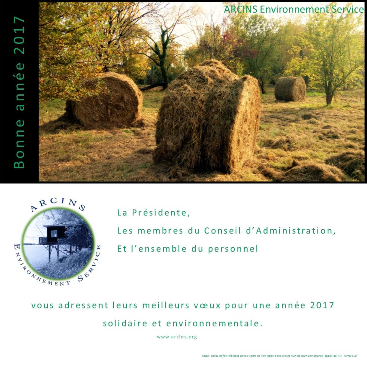 VOEUX 2017 AES