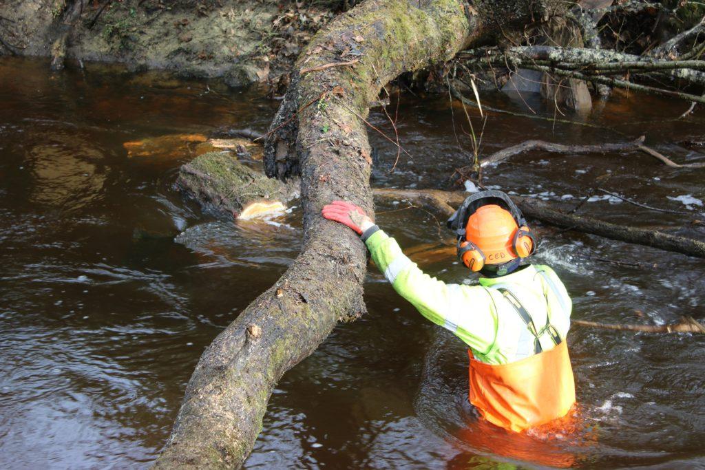 Salarié d'ARCINS Environnement Service en intervention dans un cours d'eau.