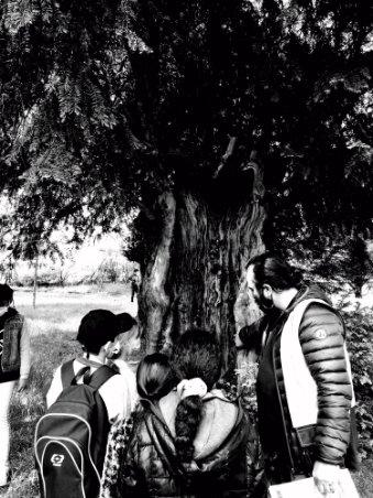 Explications à un groupe d'enfants à propos du tronc d'un If (espèce d'arbre historique du parc Mussonville).