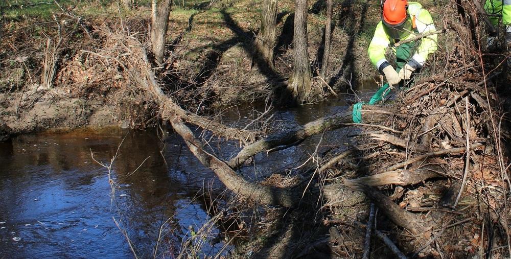 Salarié en train de sangler un tronc au-dessus d'un cours d'eau